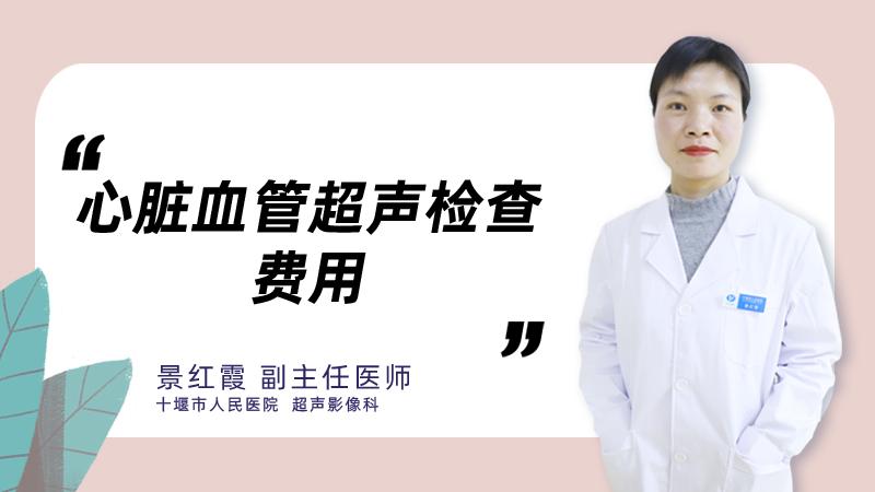 心脏血管超声检查费用